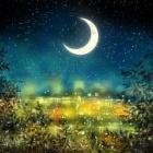『満月が近いから・・』の画像