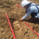 『緊急地雷除去活動』の画像