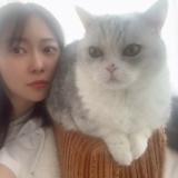 指原莉乃の猫を利用した小顔効果www