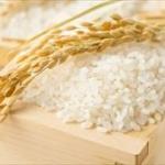 日本人特有の「米がなきゃ始まらん」精神www