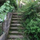 『西新宿8丁目の攻落 〜日の当たる石段』の画像