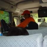 『おおむら観光周遊バスツアー & 大村公園花菖蒲まつり』の画像