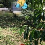 『Pokémon GO が遊べるAndroidスマホ、iPhone の情報、孫に頼まれる爺婆向けの使いこなしをSG的に整理するページ』の画像