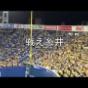 【野球】阪神糸井「草ぼうぼうの空き地…」でティー打撃公開