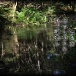 軽井沢で短歌と写真と・・・