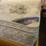 『【セール ベッド売場改装投売セール 2012夏】サータ社のパーフェクトスリーパー・Qにオリジナルボトムセット・セパレート』の画像