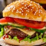 『【朗報】ハンバーガー担当大臣のワイ、ハンバーガーにレタスとトマトを挟むことを禁止する』の画像