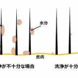 『光マイクロバブルとマイクロバブルフォーム(3550回記念)(21)』の画像