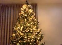 藤園麗ちゃんの家のクリスマスツリーがデカすぎるwww