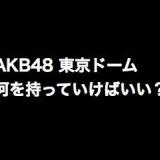 AKB48東京ドーム、何を持っていけばいい?他、MIXやカフェの話も