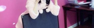 声優・東山奈央さんの猫耳パジャマ姿が可愛い!チラッと見える足にドキッ!