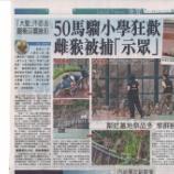 『<珍騒動>野ざる50匹が下山‼小学校に侵入』の画像