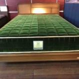 『クルーズトレイン「TRAINSUITE四季島」モデルのマット・JEーロイヤルグリーンの寝心地』の画像