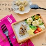 『白菜使い切り簡単レシピ・ラーパーツァイもどき』の画像