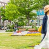 『札幌の夏Summer of Sapporo.』の画像