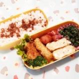 『アメリカdeお弁当①』の画像