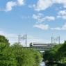 新緑の季節 Tokorozawa
