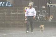 NHK「おっ、台風やんけ!パ○チラと透け下着のために街へGOや!」