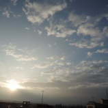 『朝の 煌き』の画像