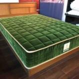 『【四季島の寝心地が自宅で体験できます】フランスベッド・JE-02にJE-ロイヤルグリーンをセット』の画像