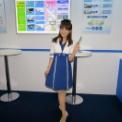 最先端IT・エレクトロニクス総合展シーテックジャパン2014 その49(VICS)