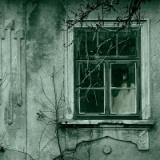 【悲報】寝ようとしてるのに窓の外に女の顔ヒョコッヒョコってなる奴www