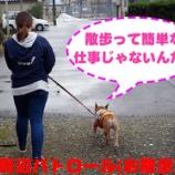 『とある日の看板犬アグーの1日に密着!! part3』の画像