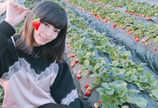 きゃりーぱみゅぱみゅさん(25)、即ハボ