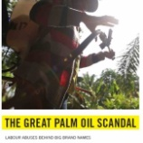 『動物だけでなく人権侵害しているパーム油』の画像