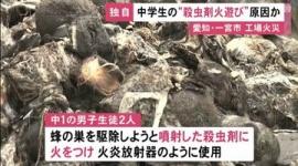 【愛知】中学生が殺虫剤を「火炎放射器」にして蜂の巣駆除→工場など約3400平方メートルの火災