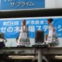 2013年 第40回藤沢市民まつり その7(ハーラウ・ナーレフアオラカの3)