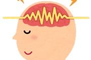 脳から重要な情報を取り出そう!~慶應義塾大学 満倉研究室~