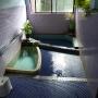 山梨県 岩下温泉 岩下温泉旅館 (2013-10頃別浴に)