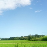 『限界分譲地の使い道を模索する③』の画像