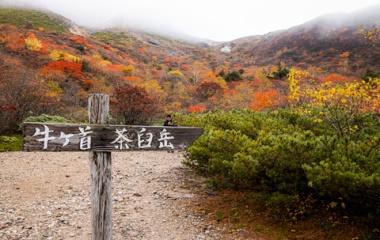 『🍂紅葉の那須🍂沼ッ原~姥ヶ平~茶臼岳お写んぽ♡』の画像