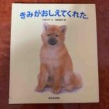 『読み終えたら愛犬と散歩に出かけよう│【絵本】215『きみがおしえてくれた』』の画像