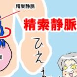 『【不妊治療体験記26】精索静脈瘤。男性不妊原因1位であり2人目不妊の8割はこれが原因!』の画像