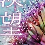 『宮田愛萌の小説家デビュー、『ひらがな推し』の企画を見てピンポイントで小説家のオファーを受けていた!』の画像