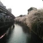 渡邊ミュージアム