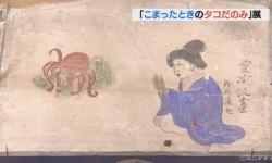 西洋では「悪魔の魚」 タコと日本人を考える企画展 鳥羽・海の博物館