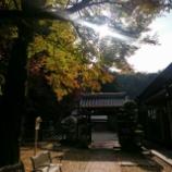 『ゆく秋を惜しむ』の画像