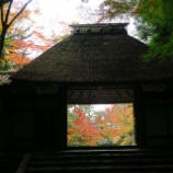 『法然院の素晴らしい紅葉』の画像