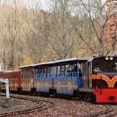 ロムニー鉄道を撮影(3)