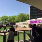 『4/28(土)全レース◎軸馬 東京・京都・新潟』の画像