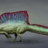 恐竜スピノサウルスの背中の秘密wwwwwwwwwwwww