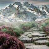 『令和初期版 姥捨て山』の画像