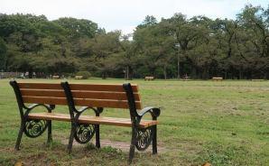 小金井公園でアニメの聖地巡礼