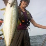 『6月22釣果 ジギング・キャスティング ヒラマサ9匹!!! 23日 釣果ヒラマサ 2匹』の画像