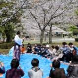 『『さくら会は』は神社を通して様々な楽しい活動をしています』の画像