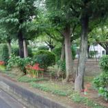 『9月の近隣の花;東大和市』の画像